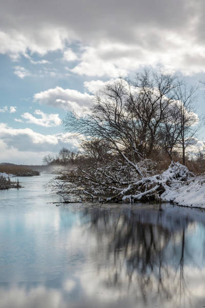 Photograph - Winter Reflection by Sara Hudock