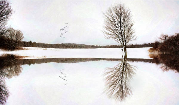 Digital Art - Winter Reflection by Sue Collura