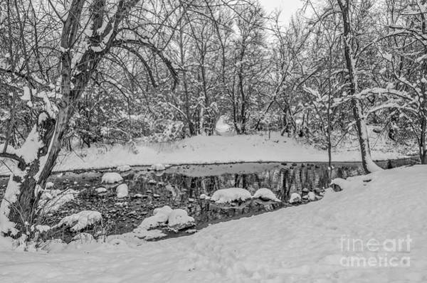 Photograph - Winter Reflections In A Creek by Sue Smith