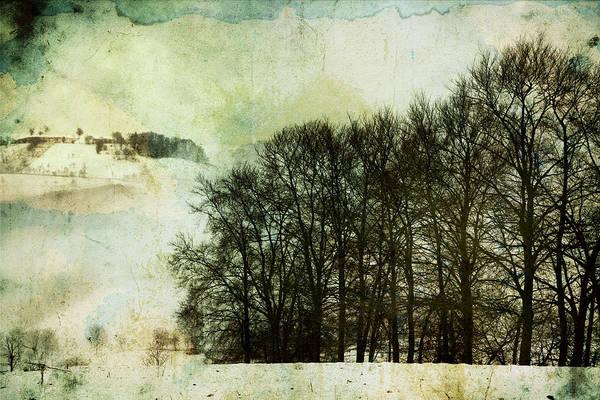 Photograph - Winter Remembrances by Vittorio Chiampan