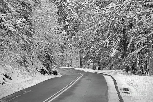Wall Art - Photograph - Winter Road In The Forest by John Stephens