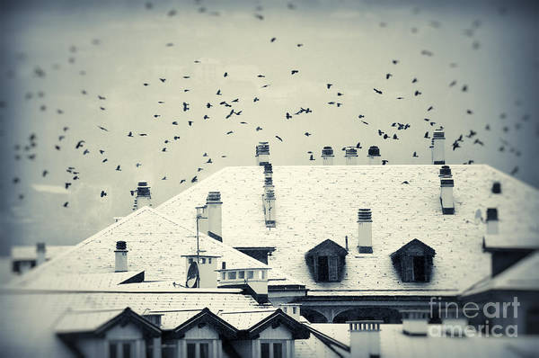 Photograph - Winter Roofs by Silvia Ganora