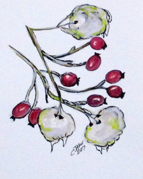 Painting - Winter Rose Hips by Clyde J Kell