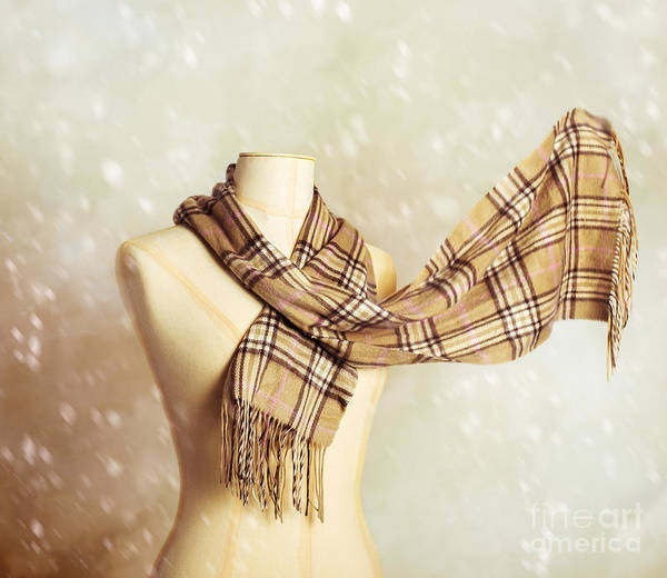 Dress Form Photograph - Winter Scarf by Amanda Elwell