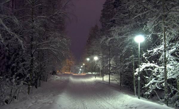 Photograph - Winter Scene 6 by Sami Tiainen