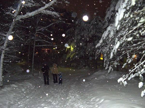 Photograph - Winter Scene 7 by Sami Tiainen