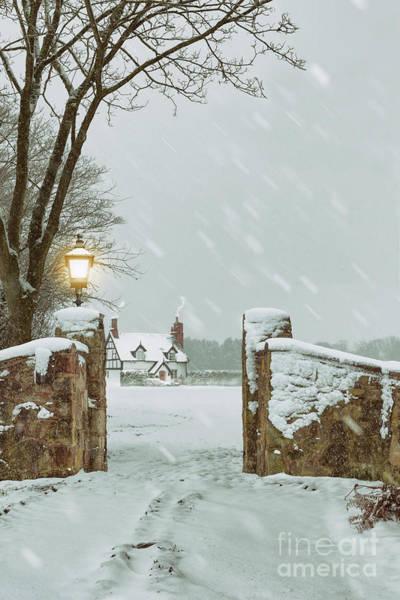 Wall Art - Photograph - Winter Scene by Amanda Elwell