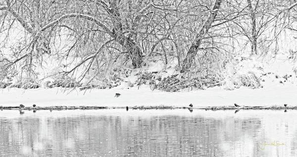 Photograph - Winter Scene On The Platte River by Amanda Smith
