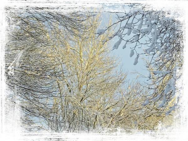 Digital Art - Winter Scenic by Rusty R Smith