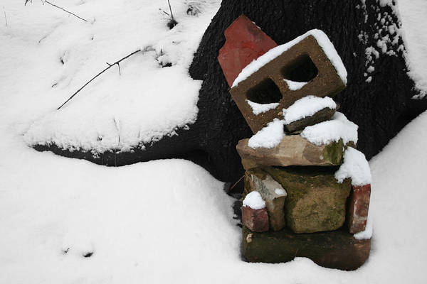Photograph - Winter Sculpture by Dylan Punke