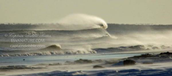 Photograph - Winter Sea Storm 2 by Captain Debbie Ritter