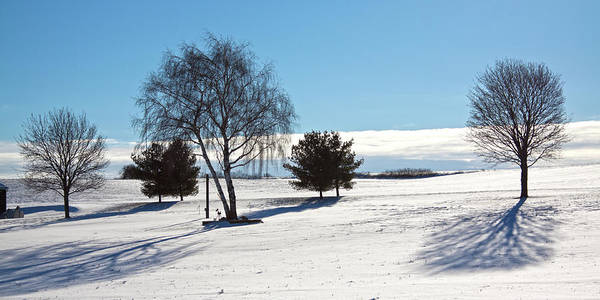 Photograph - Winter Shadows by Tatiana Travelways