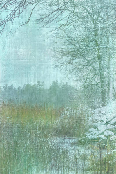 Photograph - Winter Shoreline #3 by Patti Deters