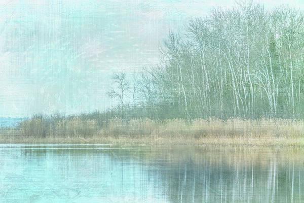 Photograph - Winter Shoreline #4 by Patti Deters