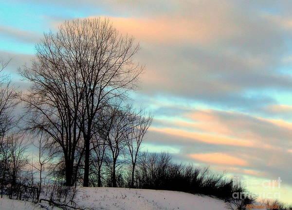 Wall Art - Photograph - Winter Sky by Elfriede Fulda