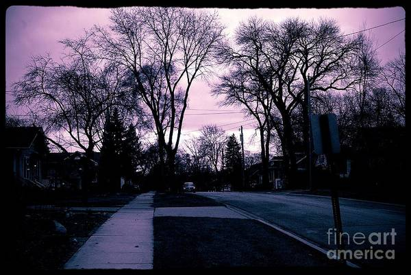 Photograph - Winter Sky On Gottschalk Avenue by Frank J Casella