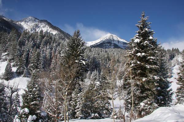 Photograph - Winter Skys by Mark Smith