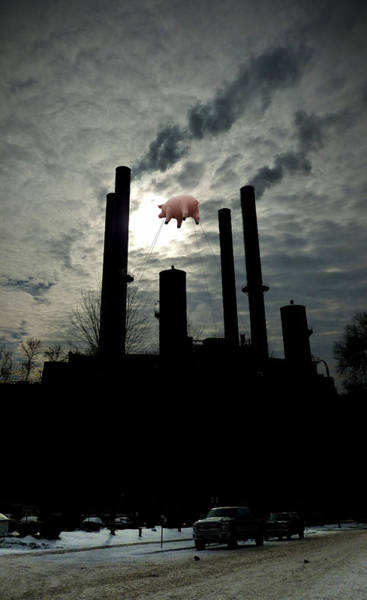 Photograph - Winter Smokestacks With Pig by Tim Nyberg