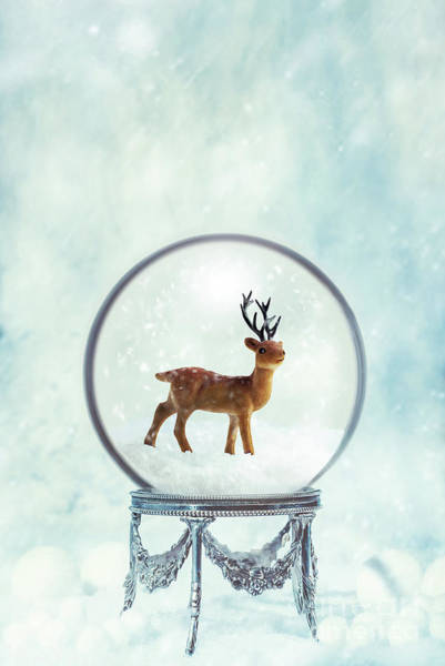 Wall Art - Photograph - Winter Snow Globe With Reindeer by Amanda Elwell