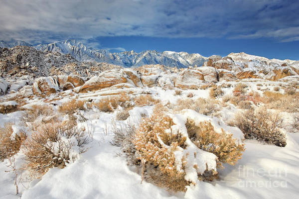 Photograph - Winter Snowstorm Blankets The Alabama Hills California by Dave Welling