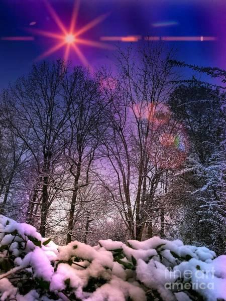 Photograph - Winter Solstice  by Rachel Hannah