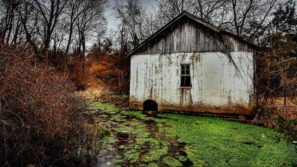 Photograph - Winter Stream by Allin Sorenson
