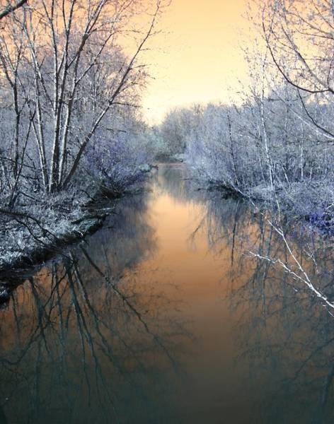 Frozen River Digital Art - Winter Stream by Ajp