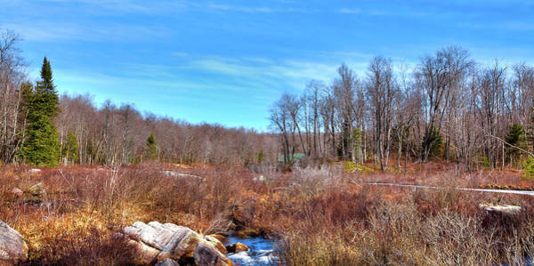 Photograph - Winter Stream by David Patterson
