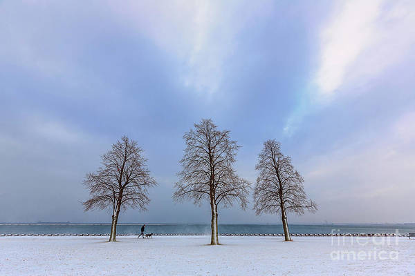Wall Art - Photograph - Winter Stroll by Andrew Slater