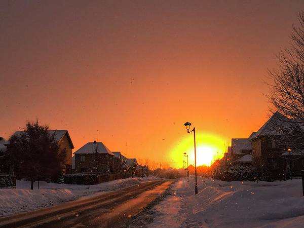 Photograph - Winter Sun Glow by Cristina Stefan