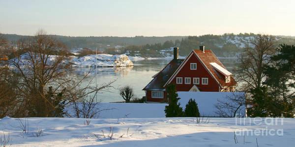 Photograph - Winter Sun by Lutz Baar