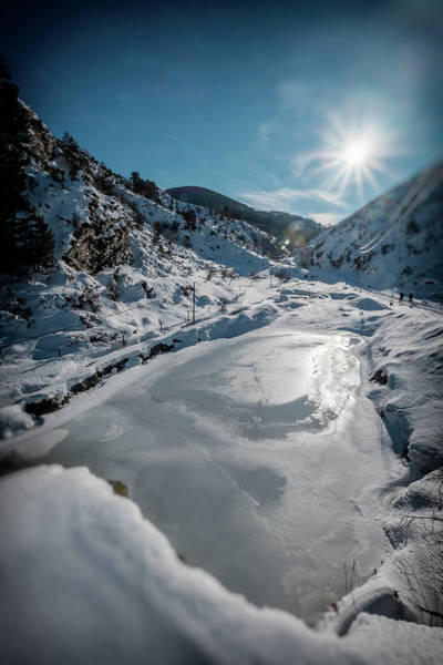 Photograph - Winter Sun by Okan YILMAZ