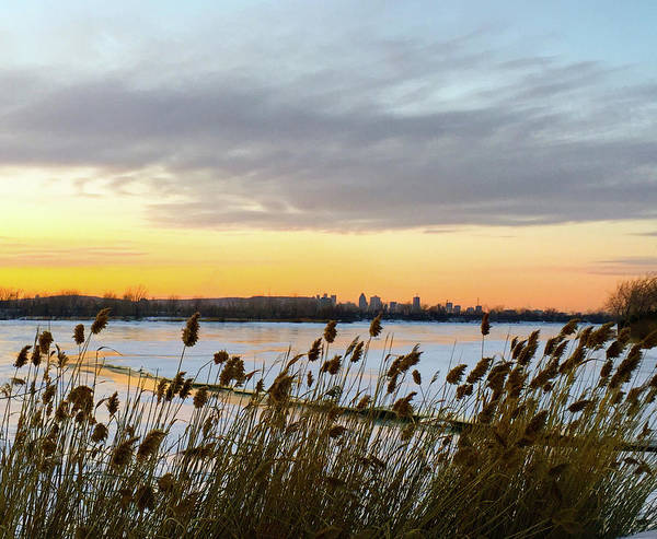 Photograph - Winter Sunset By The River And City Skyline by Cristina Stefan