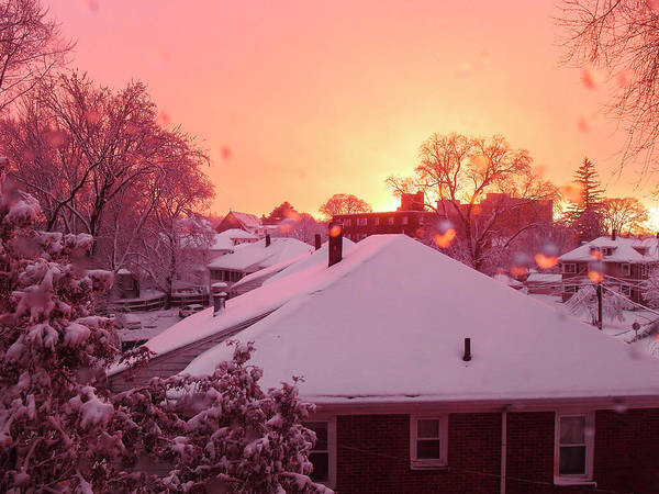 Photograph - Winter Sunset by Christopher Brown