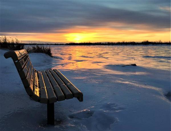 Photograph - Winter Sunset by Cristina Stefan