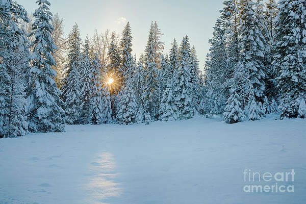 Boundary County Photograph - Winter Sunset by Idaho Scenic Images Linda Lantzy