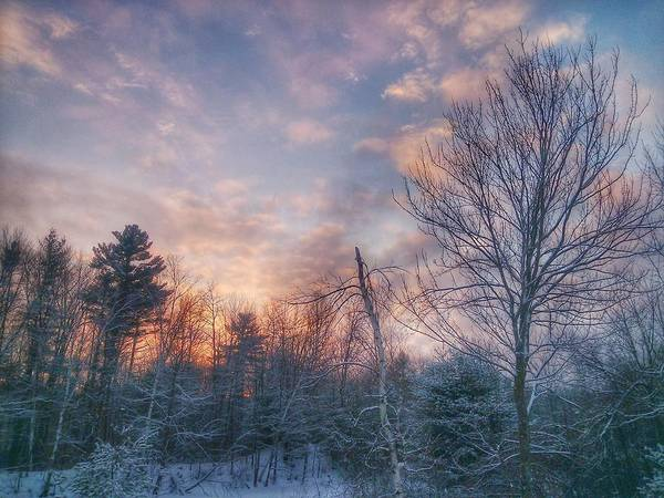 Photograph - Winter Sunset In New England by Mary Capriole