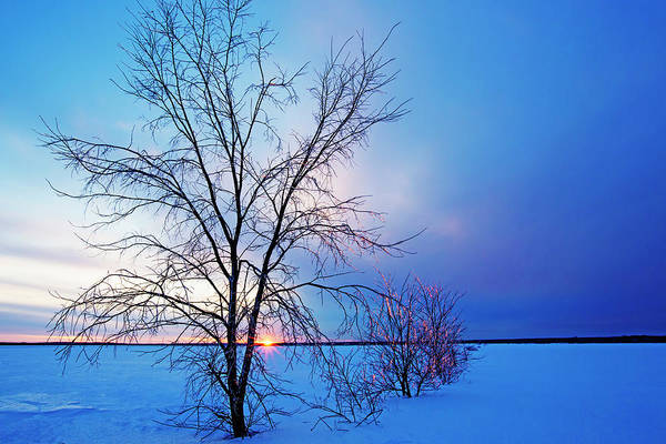 Wall Art - Photograph - Winter Sunset by Mircea Costina Photography