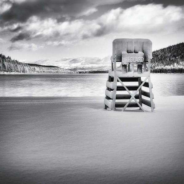 Donner Photograph - Winter Swim by Steve Spiliotopoulos