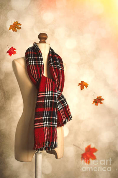 Dress Form Photograph - Winter Tartan Scarf by Amanda Elwell