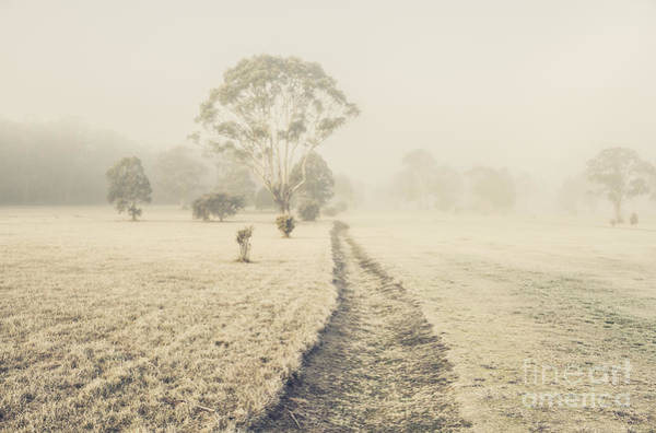 Farmyard Photograph - Winter Tasmania Background by Jorgo Photography - Wall Art Gallery