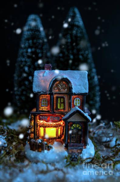 Photograph - Winter Toy Shop by David Lichtneker