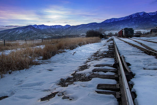 Photograph - Winter Tracks by Boyce Fitzgerald