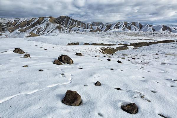 Photograph - Winter Tracks by Denise Bush