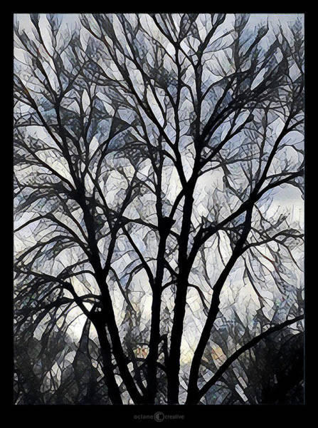 Photograph - Winter Tree by Tim Nyberg