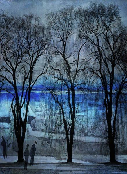 New Trend Digital Art - Winter Trees by Dominique Ballada