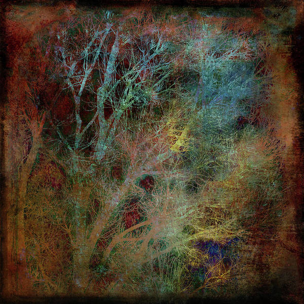 Multiple Exposure Digital Art - Winter Trees In Bronze And Silver by Sheryl Karas