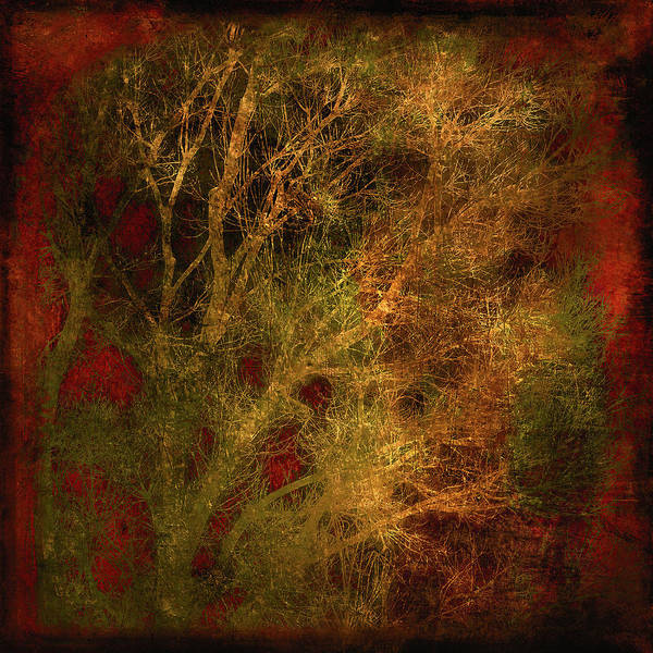 Multiple Exposure Digital Art - Winter Trees In Gold And Red by Sheryl Karas