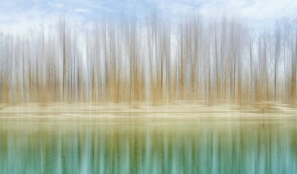 Photograph - Winter Trees On A River Bank Reflecting Into Water by Robert FERD Frank