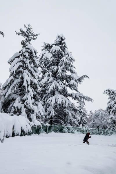 Photograph - Winter Trekking-2 by Okan YILMAZ